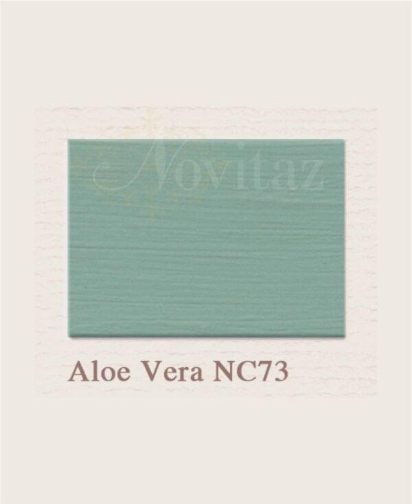 Aloe Vera NC73 painting the past