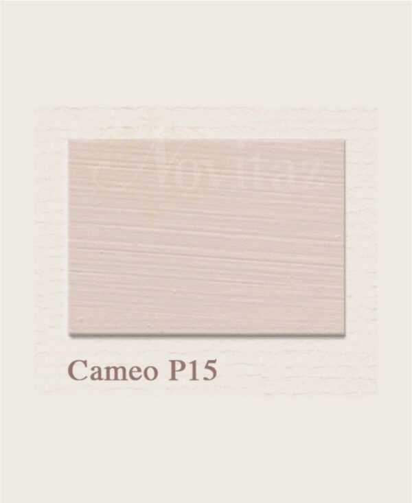 Cameo P15 painting the past