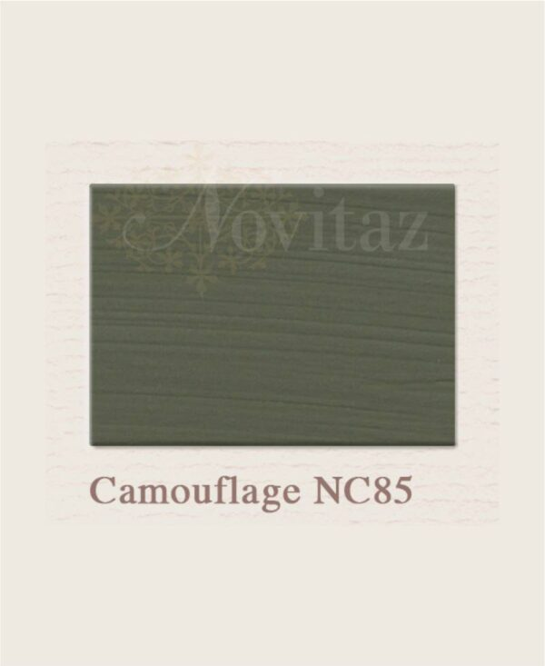 Camouflage NC85 painting the past