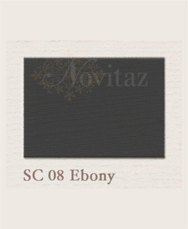 Ebony SC08 painting the past