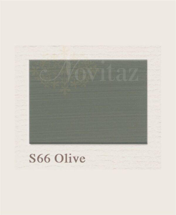 Olive S66 painting the past