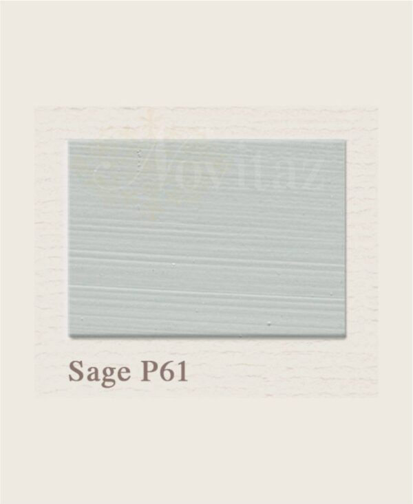 Sage P61 painting the past